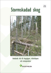 Stormskadad skog, 10-pack